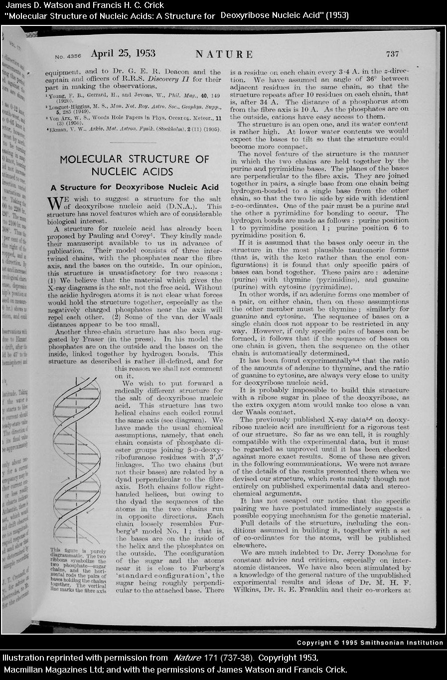 biography of francis crick essay In september 1957, francis crick gave a lecture in which he outlined key ideas about gene function, in particular what he called the central dogma these ideas still frame how we understand life this essay explores the concepts he developed in this influential lecture, including his prediction.
